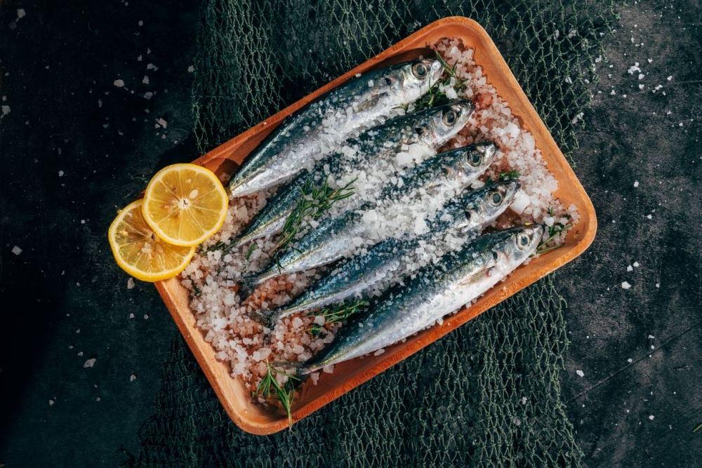 Curing Salt Substitutes: 4 Alternatives - Koyuncu Salt
