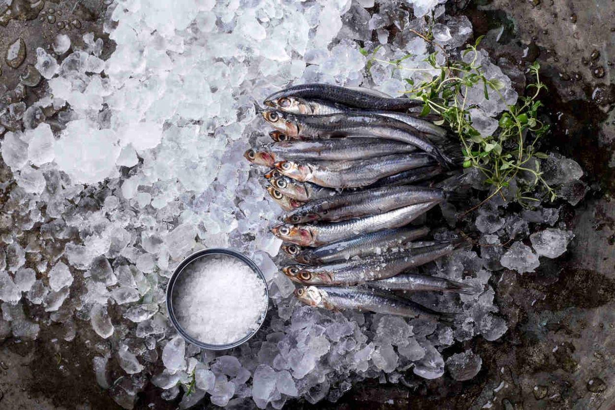 fish salt